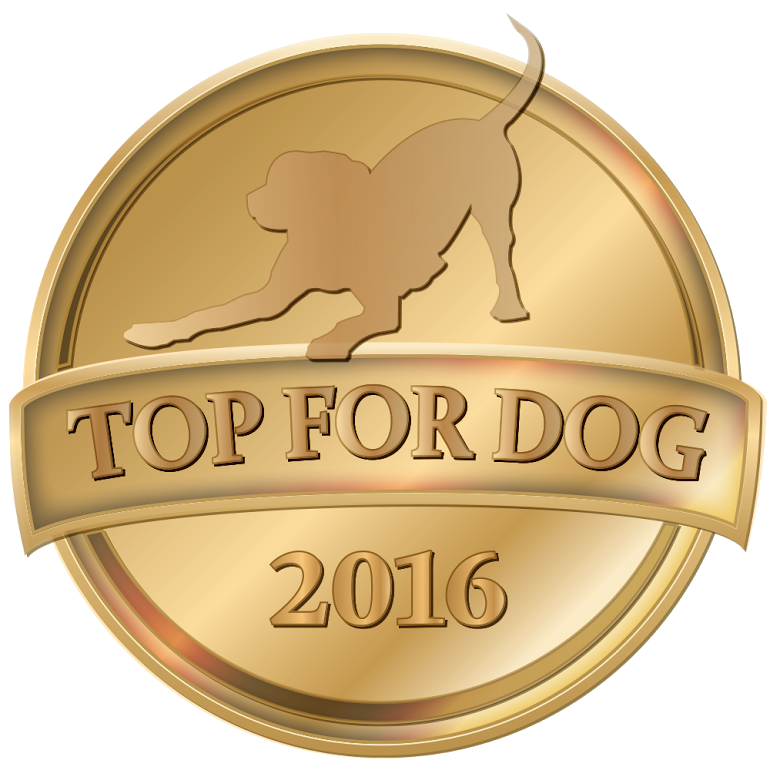 Top For Dog 2016